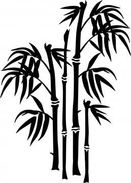 large-bamboo